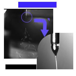vision pop up copy1